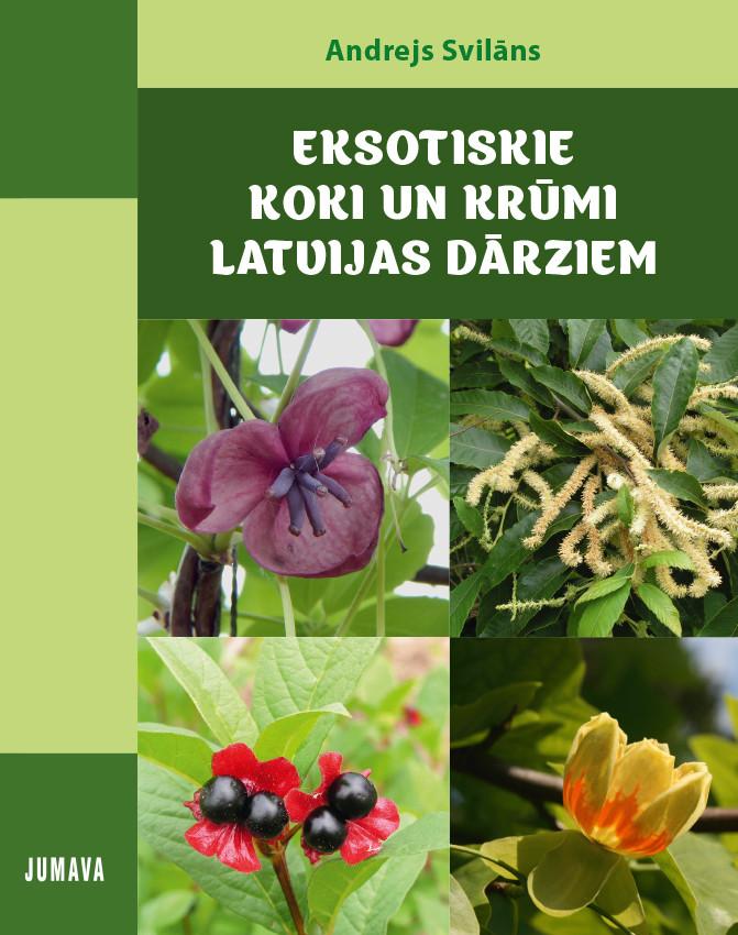 Eksotiskie koki un krūmi Latvijas dārzos